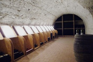 vinoteka1
